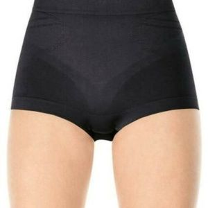 Spanx Slimmer and Shine Hip Nipper Panty 2132